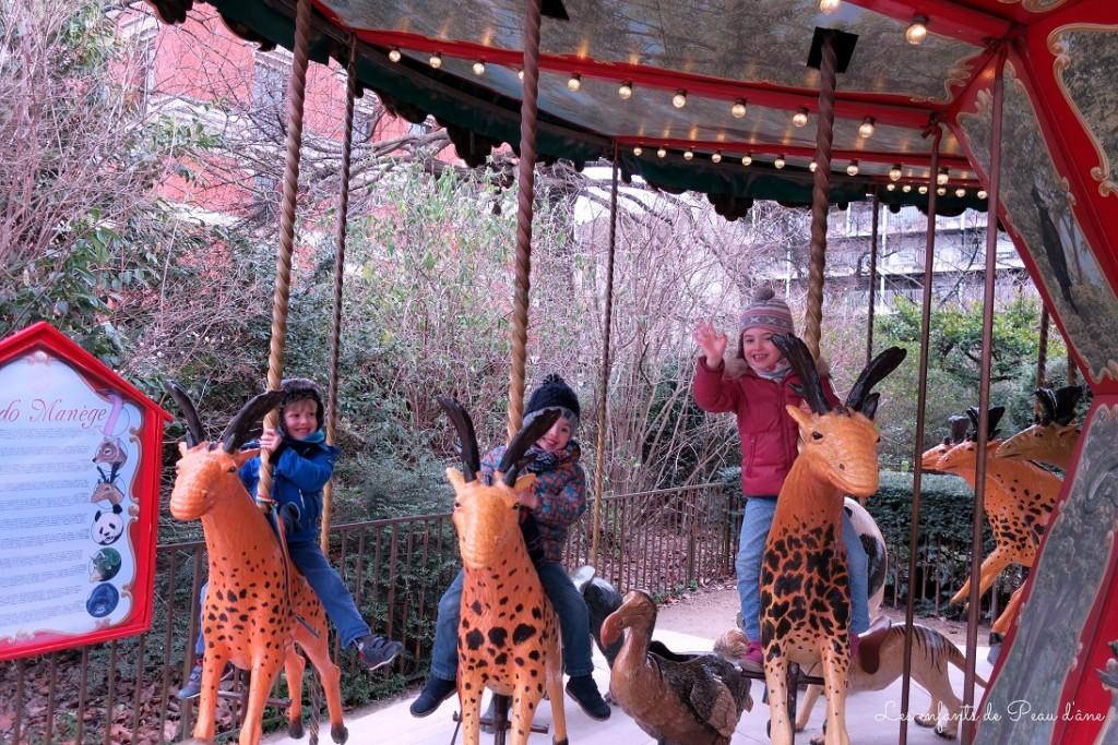 Manège girafes b
