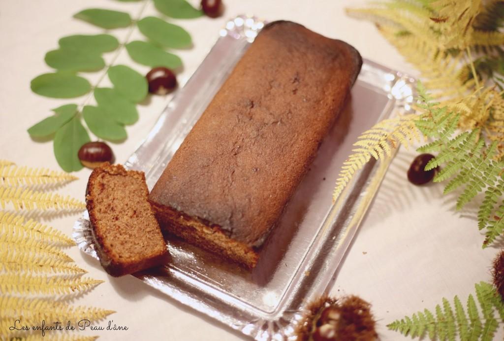 Cake farine de châtaigne b
